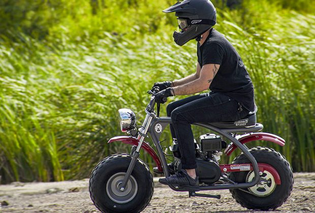 Best Mini Bikes For Adult