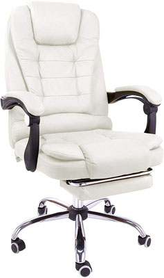 9. Halter Computer Chair with Backrest