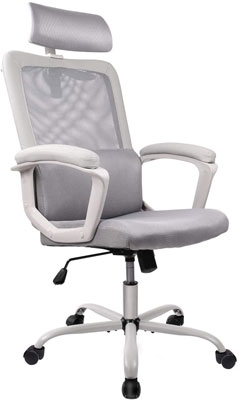 5. SMUGDESK Expensive Office Chair