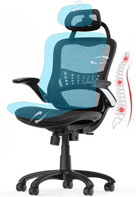8. Ergousit Expensive Office Chair