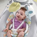 Best Baby Swings Consumer Reports 2020