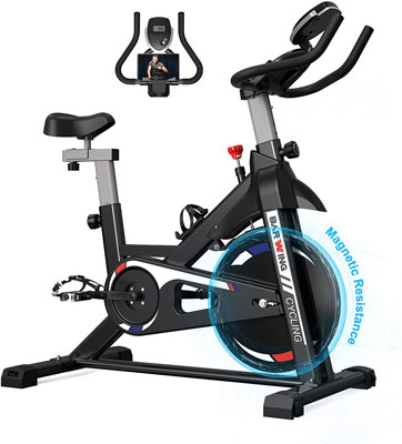 6. BARWING Exercise Indoor Cycling Stationary Bikes